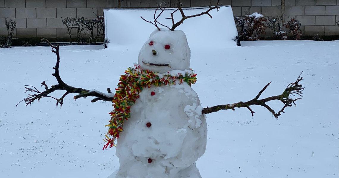 Carnaval sneeuwman door Rens Hohenwald